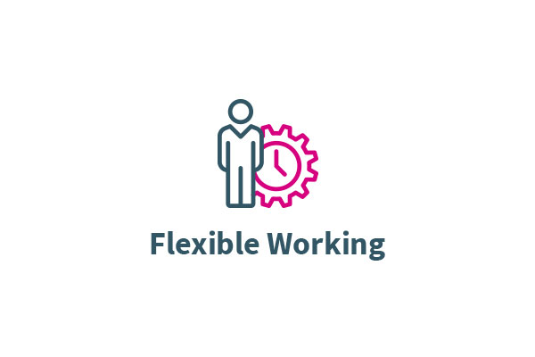 Flexible working icon